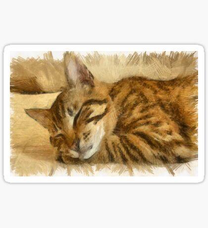 Let Sleeping Cats Lie Sticker