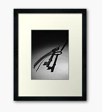 Secrets in the dark Framed Print