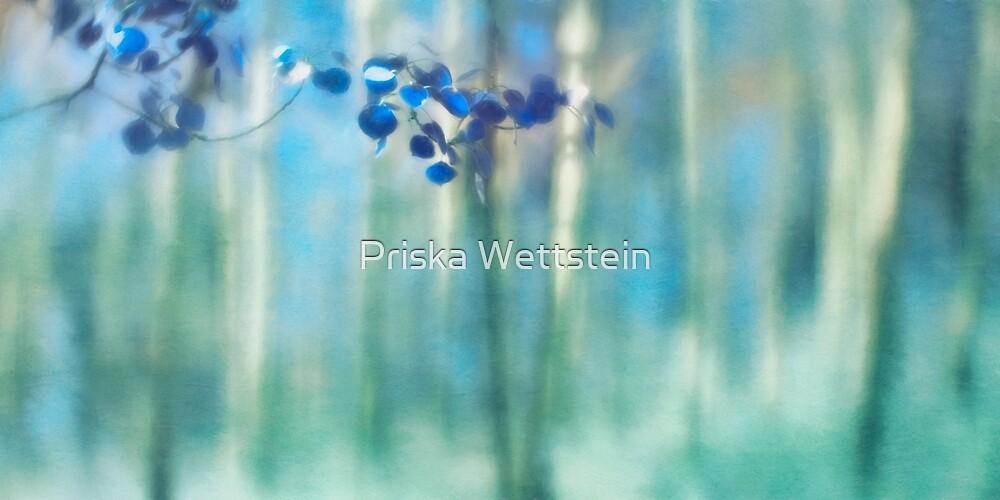 Trembling leaves by Priska Wettstein