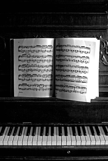 Old Time Scott Joplin by Amy  Briner