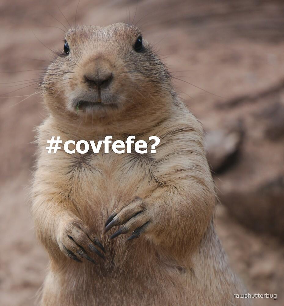 covfefe? by rawshutterbug