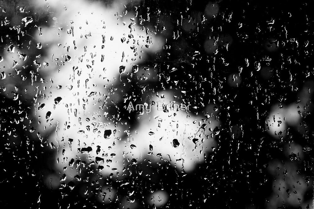 raindrops by Amy  Briner