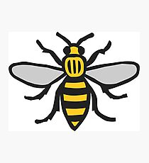 Manchester Bee, Classic Edition Photographic Print
