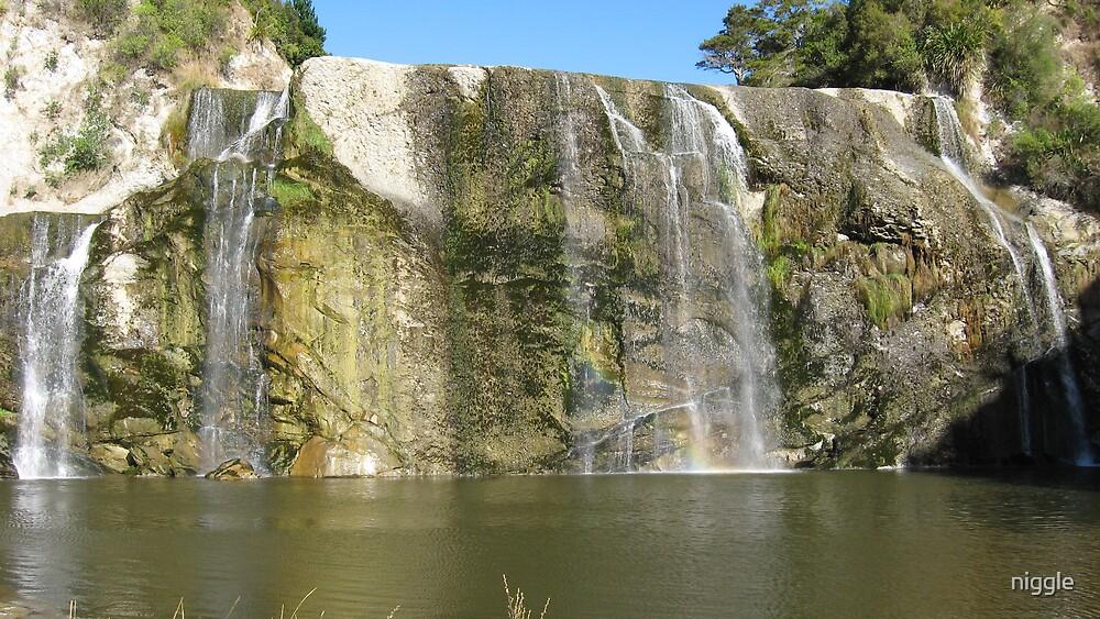 Waihi Falls by niggle