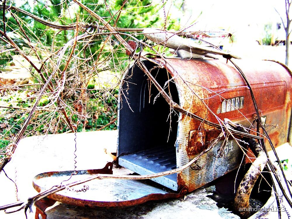 Rustic Mail  by amandadan1123