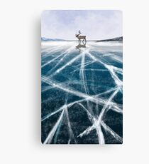 Moose on The Ice Canvas Print