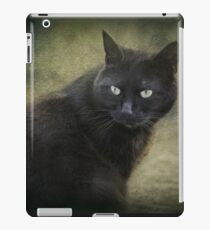 Blacky, playful kitty with green eyes  iPad Case/Skin