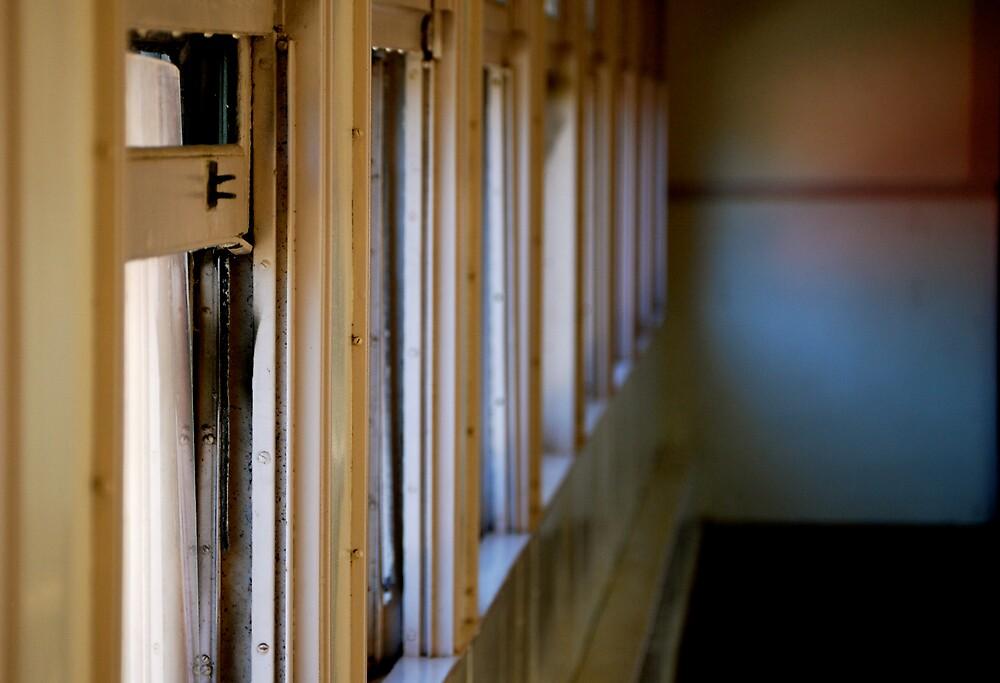 The Open Window by Robin Robb