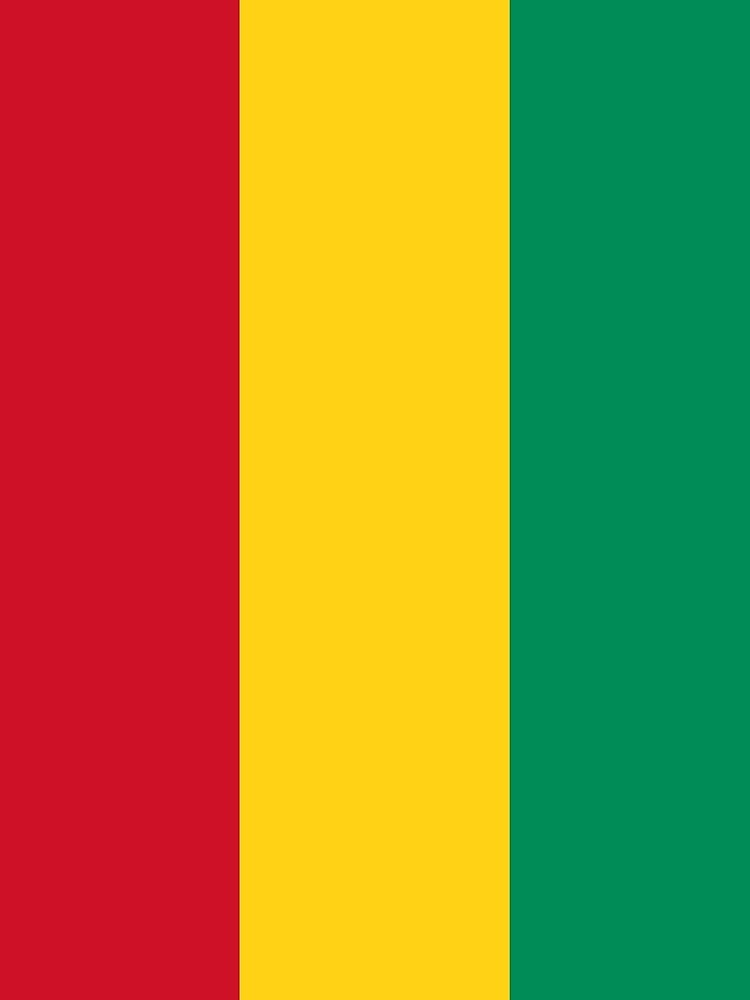 Flag of Guinea by Countries-Flags