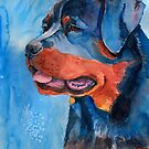 Rottweiler by doggyshop