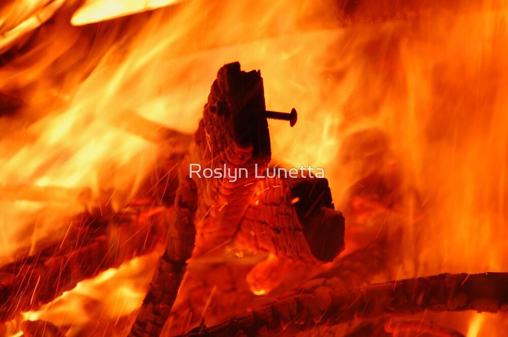 heart of a fire by Roslyn Lunetta