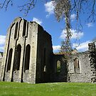 Valle Crusis Abbey by trish725