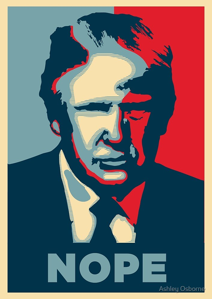 Donald trump by Ashley Osborne