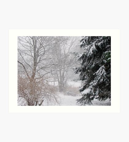 Day after the big snow... Art Print
