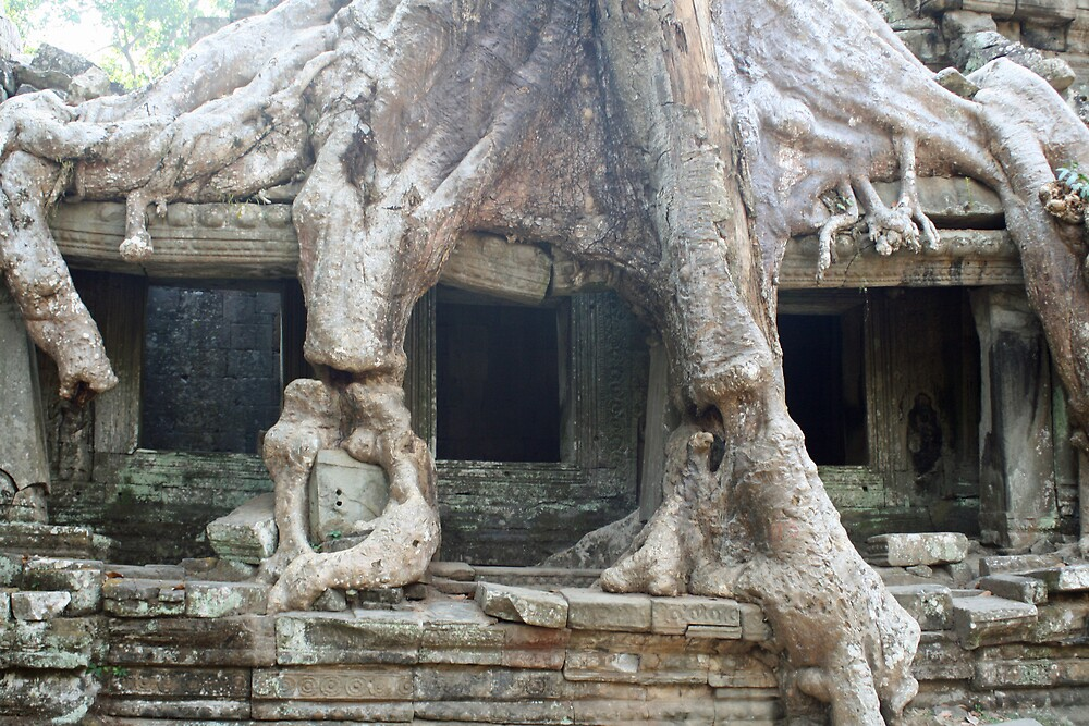 Preah Khan, Cambodia by Leigh Penfold