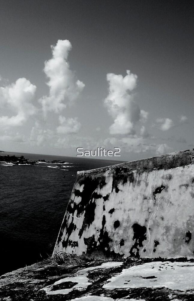 Ocean walls. by Saulite2