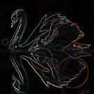 Black Swan by storecee