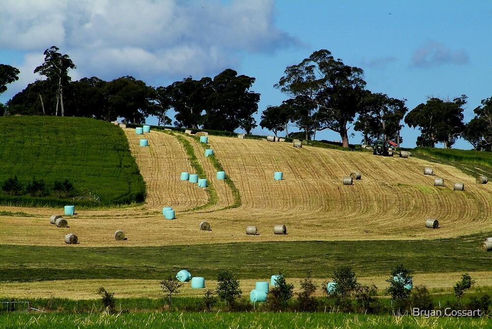 Baling Hay at Carlisle Downs  by Bryan Cossart