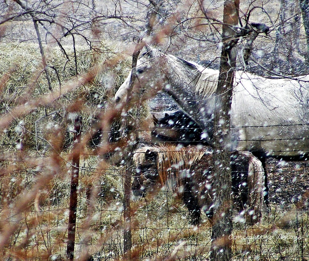 Winters Hush,Peaceful Ouiet by Connie Smith
