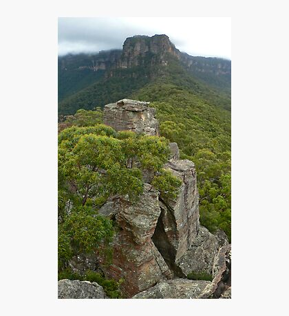 Ruined Castle to Narrowneck Photographic Print