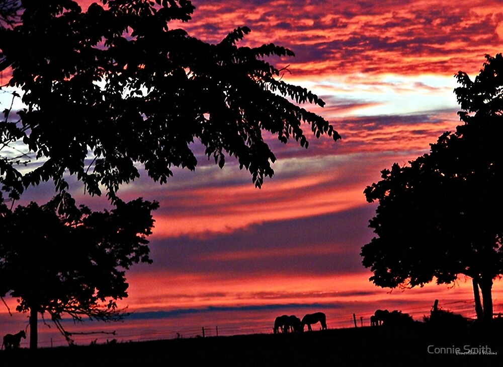 May Sets Evening Peace by Connie Smith