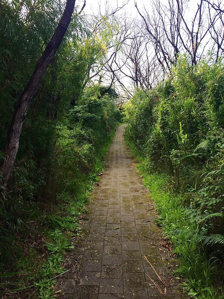 Pathway by abetompkins