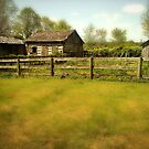Old Barn Sheds by Bine