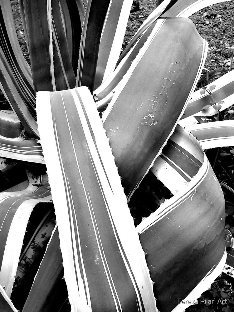 Lines by terezadelpilar ~ art & architecture