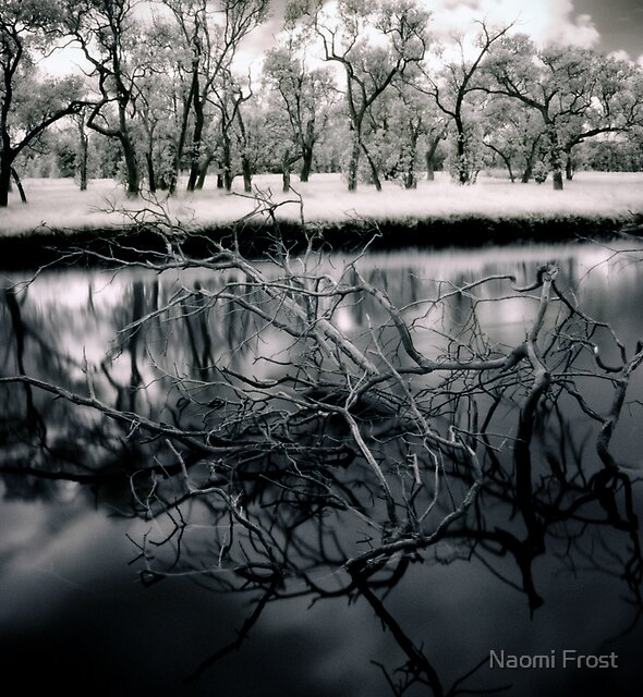 Emergence by Naomi Frost