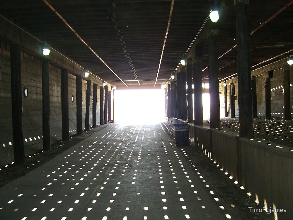Under The Bridge by TimoFyjames