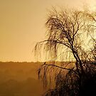 Watching The Sunrise by relayer51