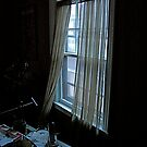 Window in My Study by Alexander Greenwood