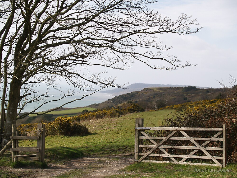 Through the open gate by Jonathan Dower