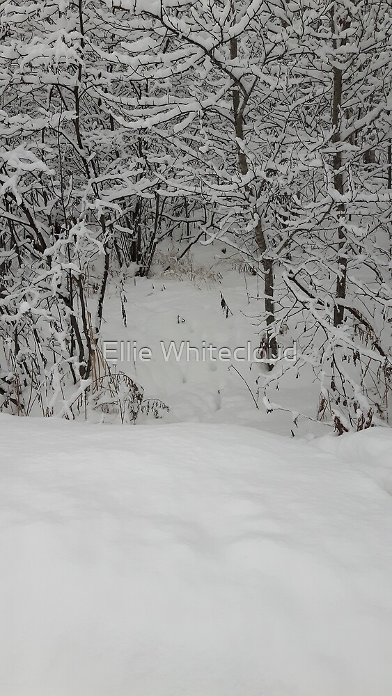 Winter doorway to the forest by StreetFighter56