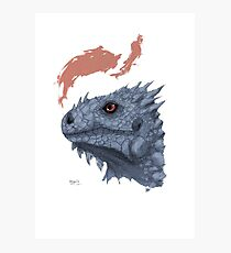 St. George's Dragon Photographic Print
