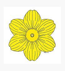 Heraldic Daffodil Photographic Print