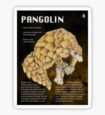 Pangolin Educational Print Sticker