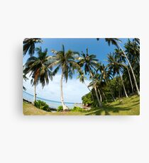 Tall palm trees next to ocean coast with blue sky. Canvas Print