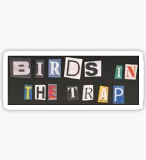 Birds in the Trap Sticker