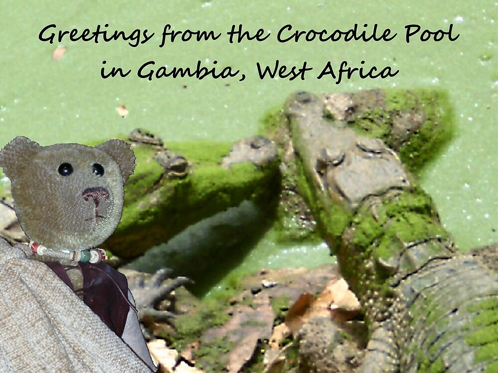Gambia Postcard by Mrsomsartist