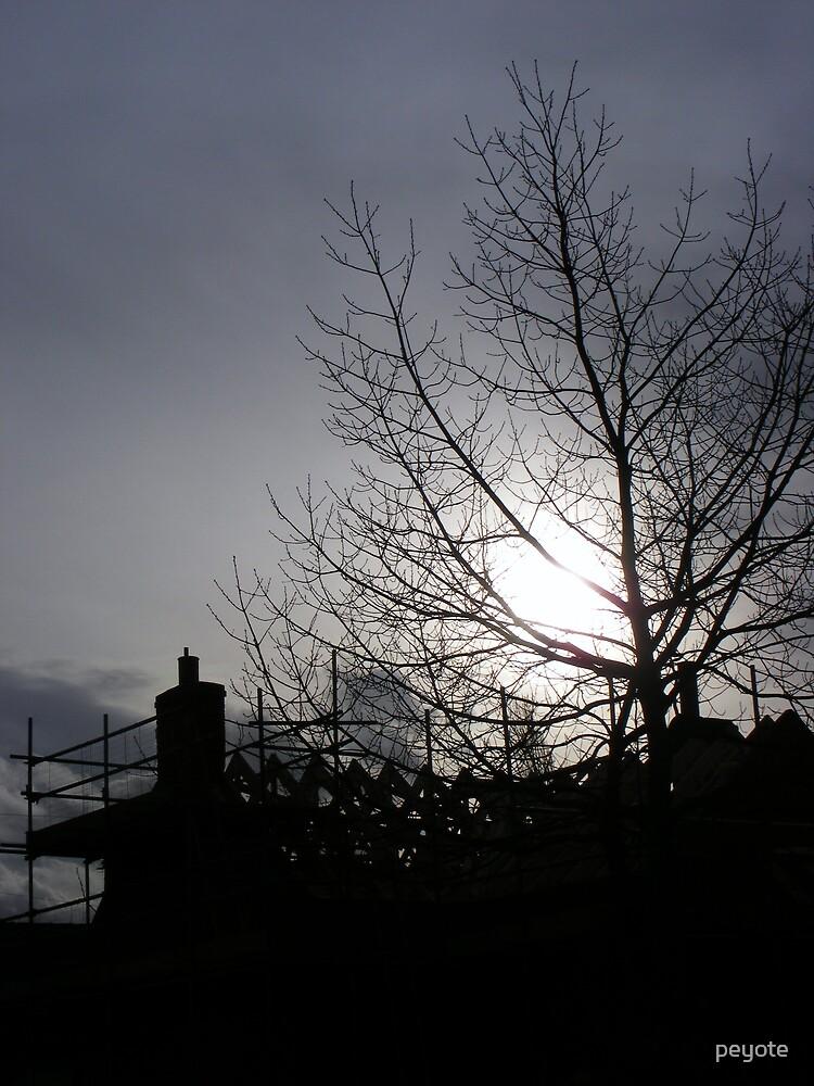 Sunset Scaffolding by peyote