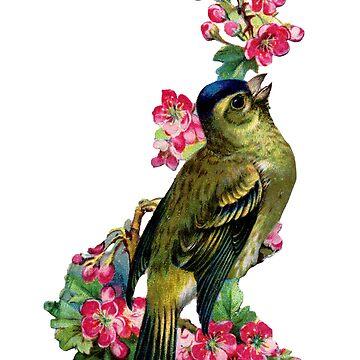Victorian Scrapbook: Bird with Blossom by carrieclarke