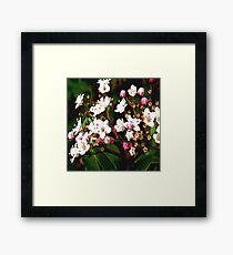 FloralFantasia 23 Framed Print