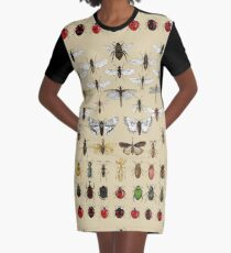 Entomology Insect studies collection  Graphic T-Shirt Dress