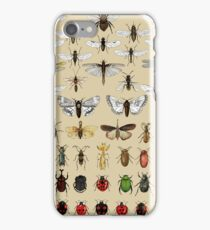 Entomology Insect studies collection  iPhone Case/Skin