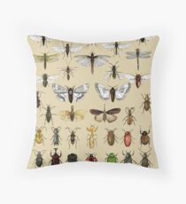 Entomology Insect studies collection  Throw Pillow