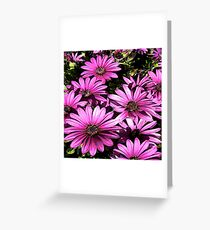FloralFantasia 27 Greeting Card