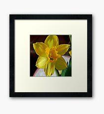 FloralFantasia 28 Framed Print
