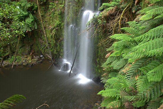 Beauchchamp Falls by Kerry  Hill