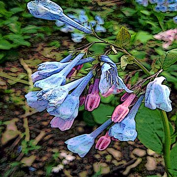 FloralFantasia 29 by oliverart